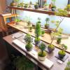 今回のAirbnbブログは『趣味特化型』の部屋作りの紹介♪