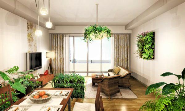foliage-plant.living