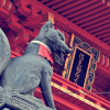 海外でも大人気!京都の注目スポットAirbnbブログでご紹介♪
