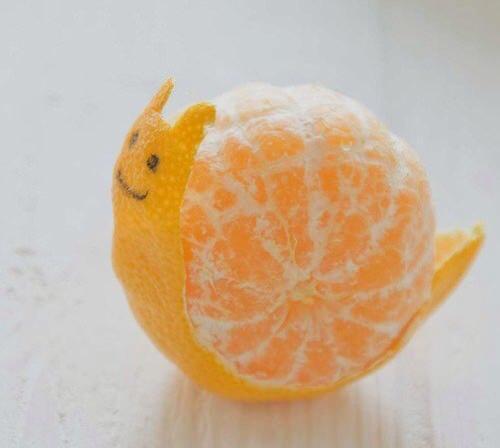 mikan-art.snail