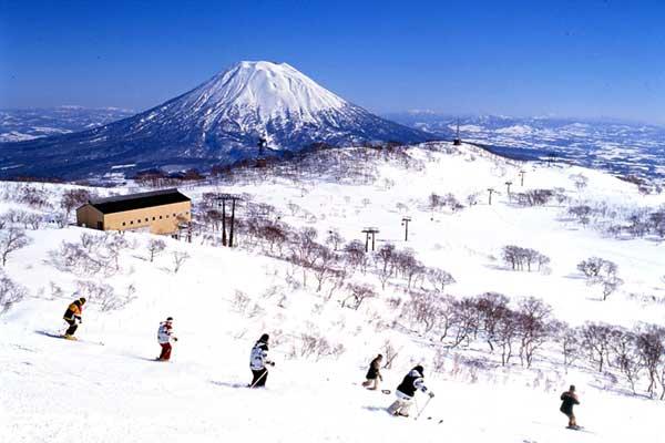 niseko-ski