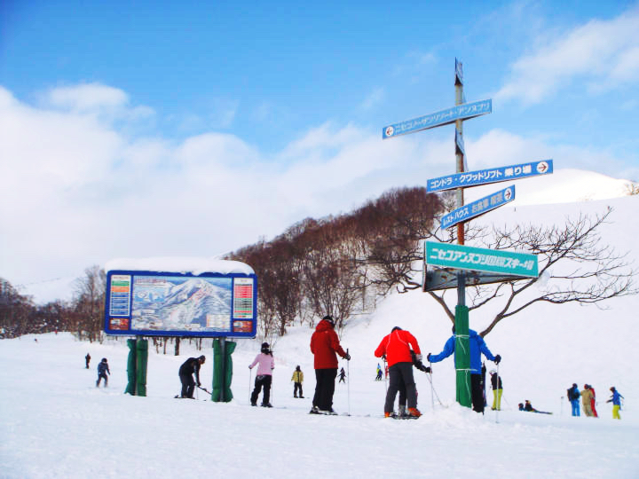niseko.international-ski